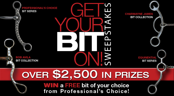 Get Your Bit On 2010 Sweepstakes