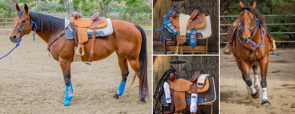 The Complete Equine Protection Pack by Professional's Choice