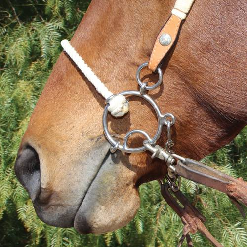Brittany Pozzi Combination Series Twisted Wire Snaffle
