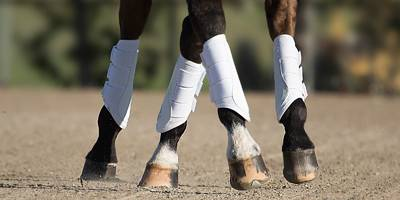 English Boots & Wraps