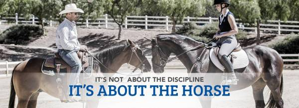 It's not about the Discipline