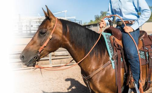 Harness Leather Romal Reins with Waterloops