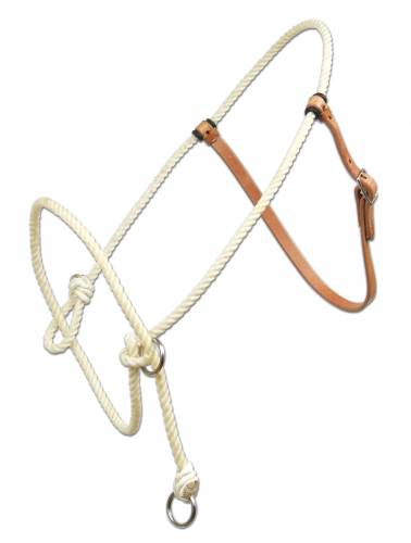 Training Halter