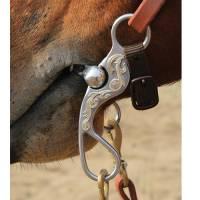 Bob Avila Santa Rosa Shank - Dog Bone Roller - Image 2