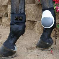 Boots & Wraps - Pro Performance - Pro Performance Memory Foam Fetlock Boots