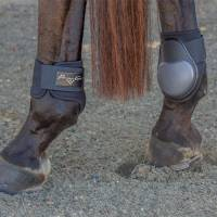 English - Clearance - Pro Performance Fetlock Boots