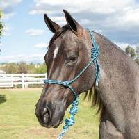 Western - Halters, Lead Ropes & Breast Collars - Professionals Choice - Rope Halter