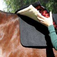 Saddle Pads - Comfort-Fit Air Ride Pads - Saddle Pad Liner