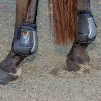 Boots & Wraps - Pro Performance - Pro Performance Show Jump REAR Boots