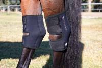 Therapy Products - Equine Theramic Products - Theramic Hock Boots