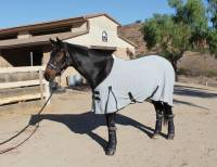 Western - Therapy Products - Equine Theramic Products