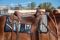 Clearance - Saddle Pads - Comfort-Fit SMx Air Ride Pad: Vision