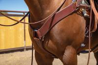 Ranch Roper Breast Collar - Image 1