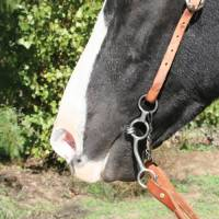 Equisential by Professionals Choice - Equisential Performance Long Shank Bit - Twisted Wire Snaffle - Image 2