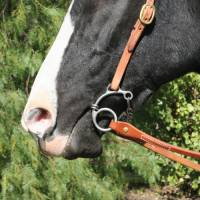 Equisential by Professionals Choice - Equisential Route 66 Bit - Smooth Snaffle - Image 2