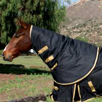English - Blankets & Sheets - Equisential by Professionals Choice - Equisential 600D Neck Cover