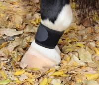 Boots & Wraps - Bandages & Wraps - Professionals Choice - VenTECH Pastern Wrap - Black
