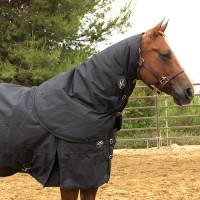 Western - Blankets & Sheets - 1200D Neck Cover