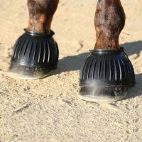 Boots & Wraps - Bell Boots - Pull On Rubber Bell Boots